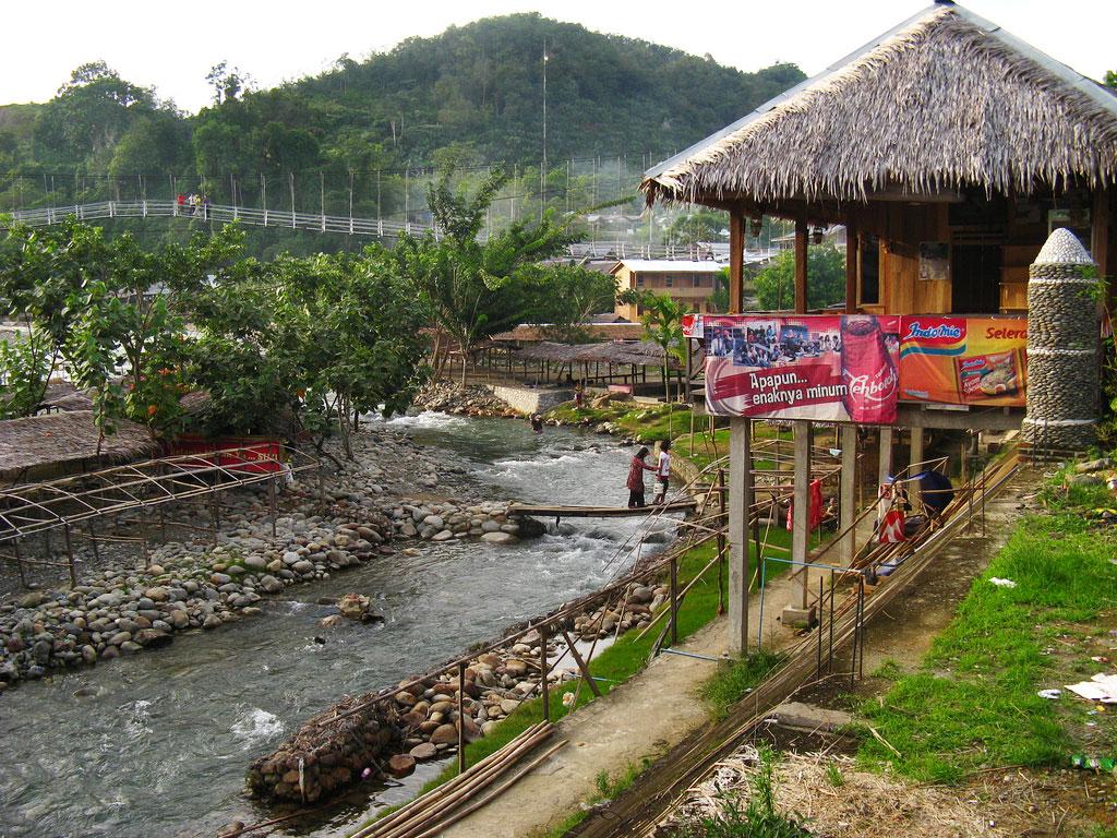Bukit Lawang town
