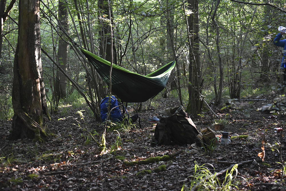 A hammock adds a little luxury to camping wild in a forest.