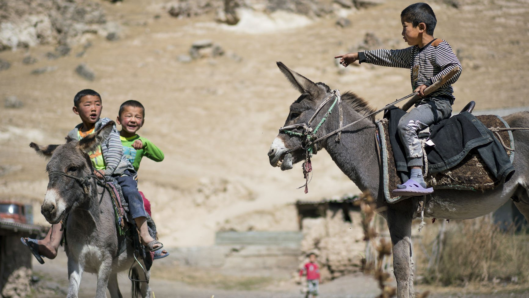 Local children riding donkeys